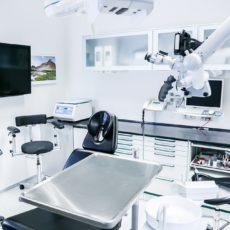 Por qué ir al dentista